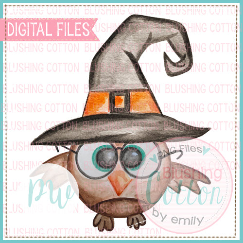 SMART OWL WITCH HAT WATERCOLOR ART PNG
