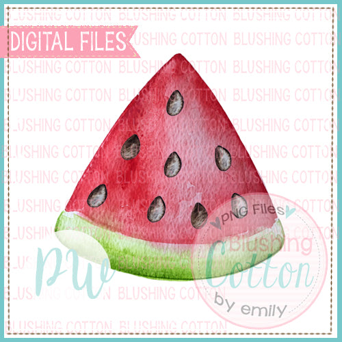 WATERMELON SLICE WATERCOLOR DESIGN BCPW