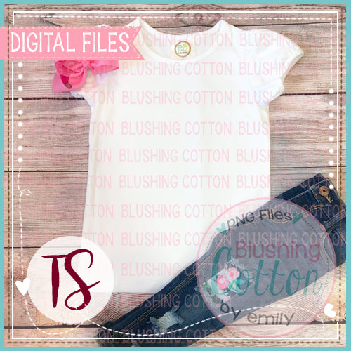 BB BLANKS GIRLS RUFFLE SHORT SLEEVE TOP WITH PINK BOW FLAT LAY BCTS