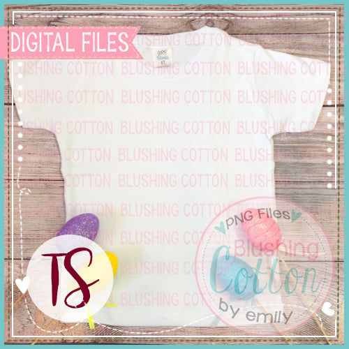 ARB BOYS SHORT SLEEVE SHIRT WITH EASTER 2 ACCENTS FLAT LAY BCTS
