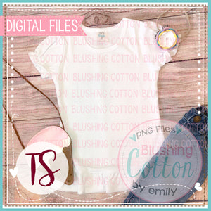 BB BLANKS WHITE SHORT SLEEVE RUFFLE TOP WITH ICE CREAM BAG AND JEANS FLAT LAYS BCTS