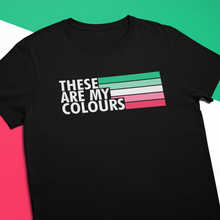 Load image into Gallery viewer, Abrosexual Pride Flag Shirt | Rainbow & Co