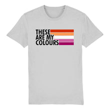 Load image into Gallery viewer, Lesbian Community Flag T Shirt | Rainbow & Co