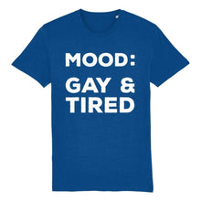 Load image into Gallery viewer, Mood Gay & Tired Shirt | Rainbow & Co