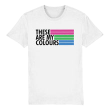 Load image into Gallery viewer, Polysexual Flag T Shirt | Rainbow & Co