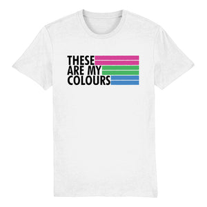 Polysexual Flag T Shirt | Rainbow & Co