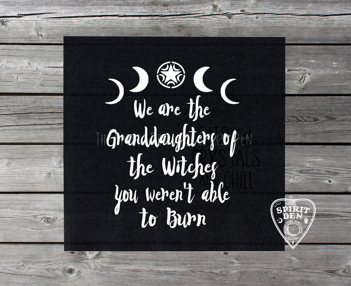 We Are The Granddaughters of The Witches You Weren't Able to Burn ...