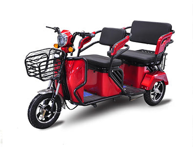 2-person mobility scooter