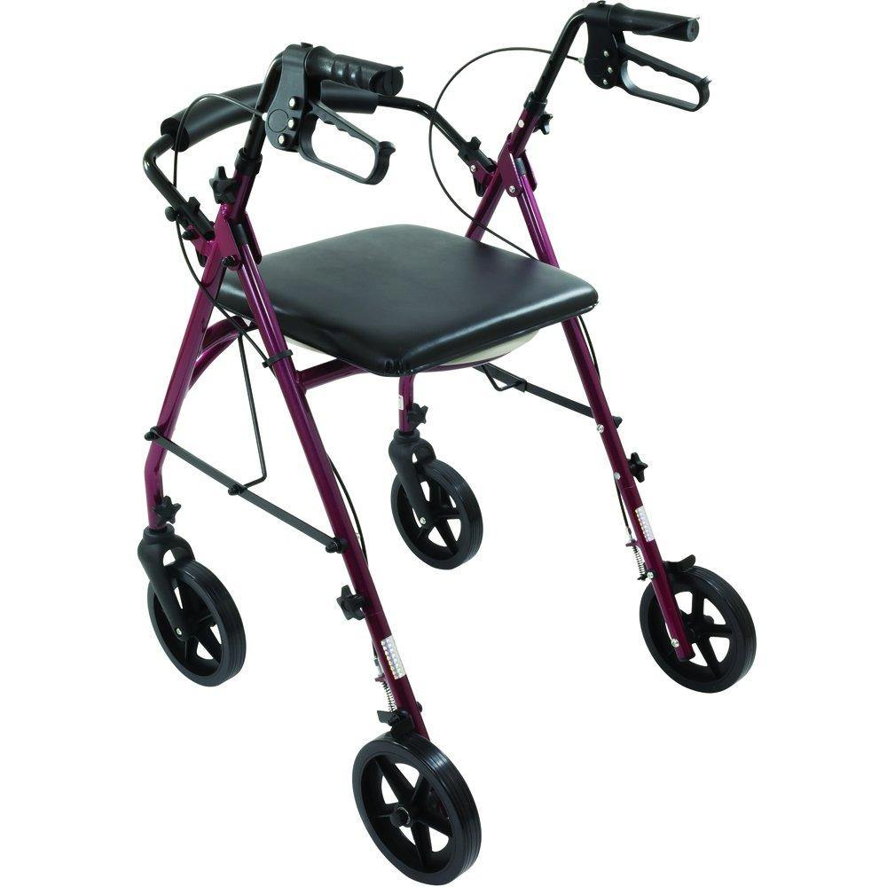 Free2Go Mobility: Rollator with Toilet Seat