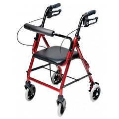 Graham Field: Lumex  Walkabout Lite Junior Rollator - RJ4301R main image