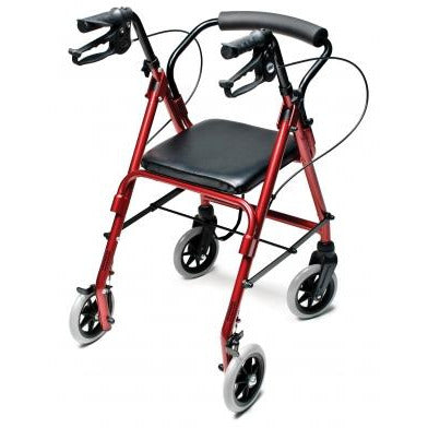 Graham Field: Lumex  Walkabout Lite Junior Rollator - RJ4301R