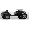 Image of FreeRider: GDX All-Terrain Mobility Scooter        ****BOOK NOW!!!****
