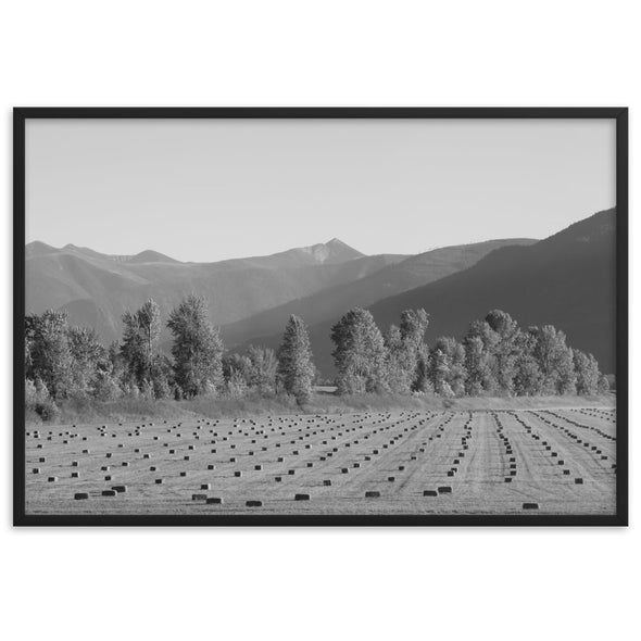 Creston BC Farm Black And White Poster