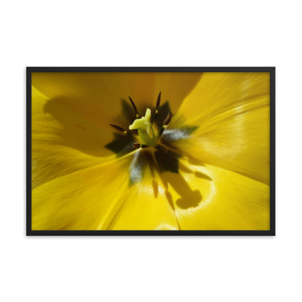 Yellow Floral With Shadow