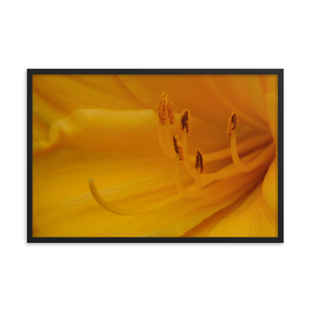 Yellow Floral Poster