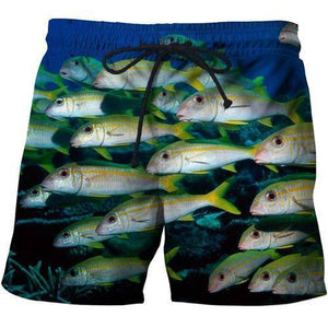 3D Print Fish Frenzy Shorts