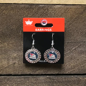 Tucson Roadrunners Aminco Dimple Earrings