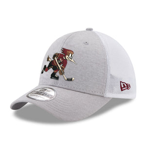 Tucson Roadrunners New Era Official Logo Shadow Tech 39THIRTY - Gray