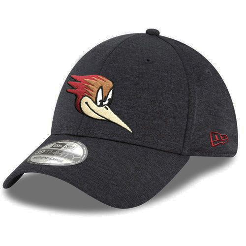 Tucson Roadrunners New Era Head Logo Shadow Tech 39THIRTY - Black