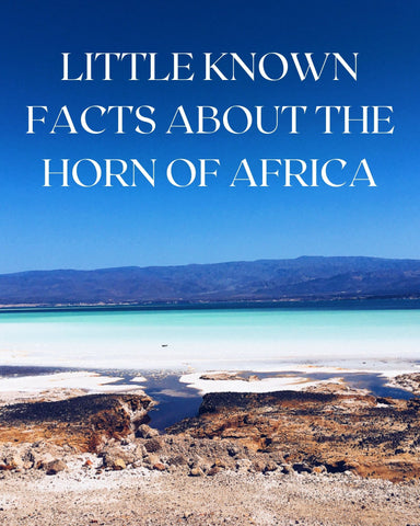 LITTLE KNOWN FACTS ABOUT HORN OF AFRICA, africa, desert, lake, water