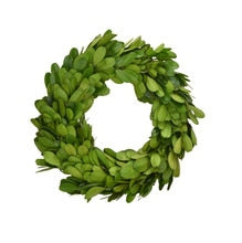 "6"" preserved boxwood wreath/candle ring"