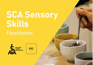 SCA Sensory Skills Foundation