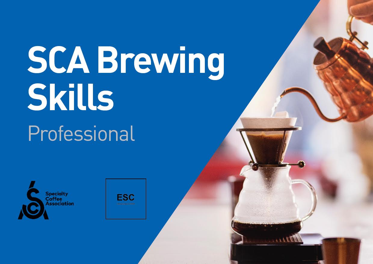 SCA Brewing Skills Professional