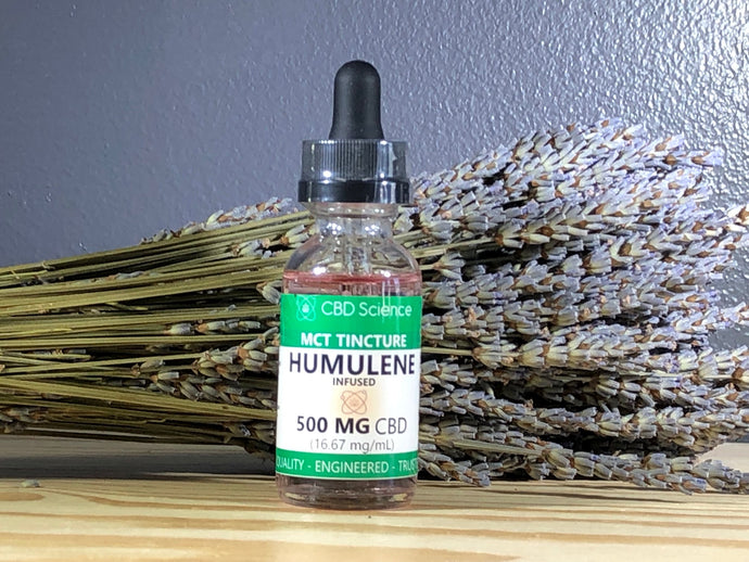 CBD Tincture Terpene Infused : Humulene