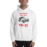 Gildan Hooded Sweatshirt: TR-3 red text