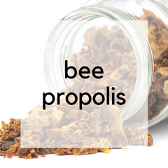 Learn About Bee Propolis