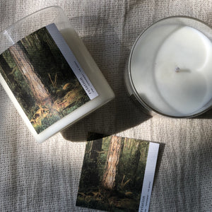 Relation Candles:  07:Forest - Pine, Peppermint, Fir Needle