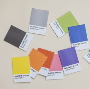 Pantone Notebook Set