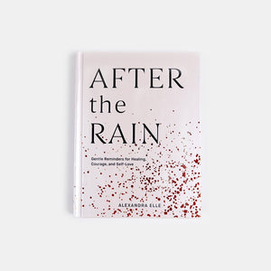After the Rain | Gentle Reminders for Healing, Courage, and Self-Love