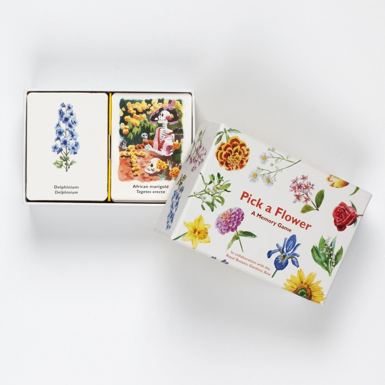 Raincoast Books Pick a Flower A Memory Game Open