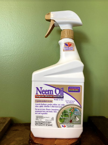 Neem Oil 32fl oz