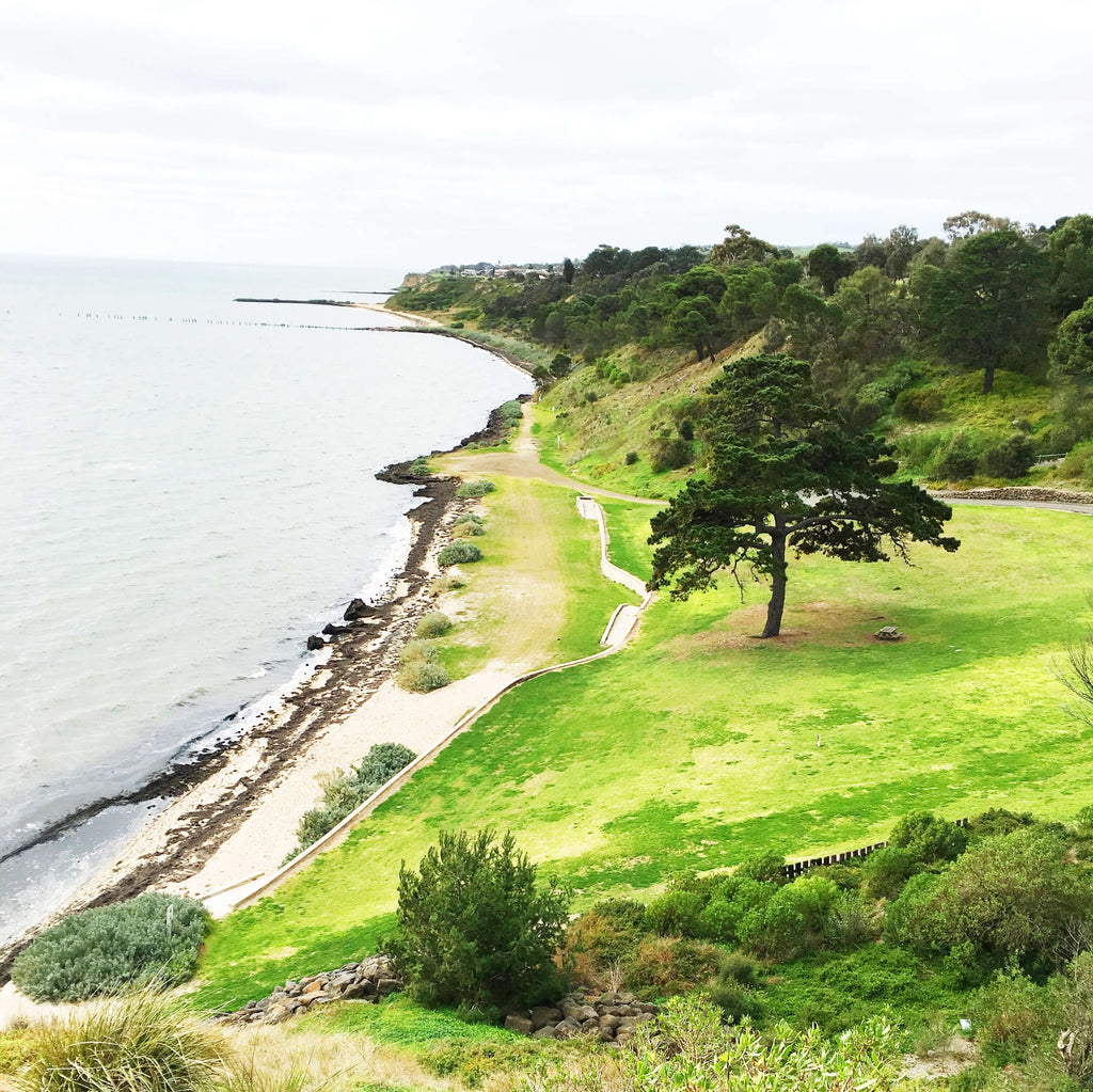 The Dell Clifton Sprngs best picnic spots Geelong Bellarine Surfcoast