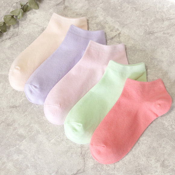 Candy Color Elastic Breathable Cotton Socks - chicstocking