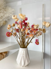 Dried Strawflower - Stems