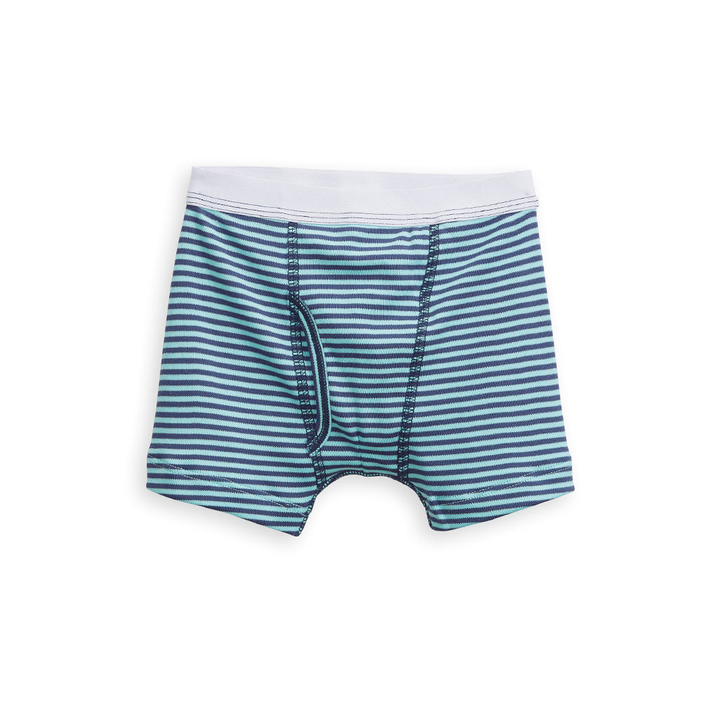 Printed Boxer Brief (1551262580849)