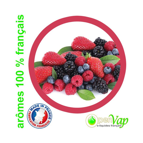 FRUITS ROUGES Openvap - 10 ml