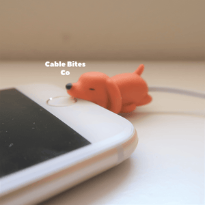 Cable Animal Bites - Dog