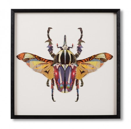 Rhino beetle framed paper collage