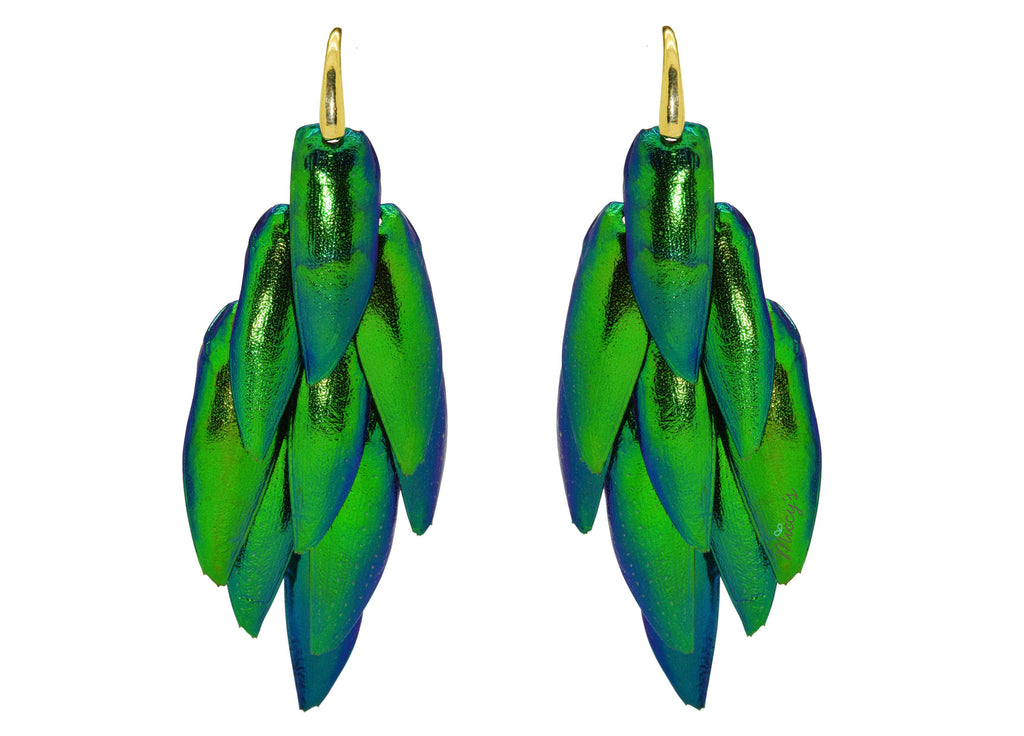 Jewel Beetle | Skins Earrings