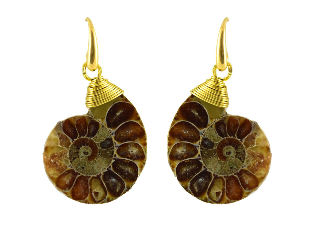 Fossil Glory | Ammonite   Shell Earrings