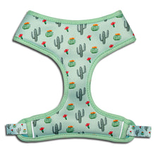 Load image into Gallery viewer, Frenchie Supply Harness - Desert Cactus