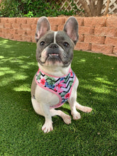 Load image into Gallery viewer, Frenchie Supply Harness - Floral