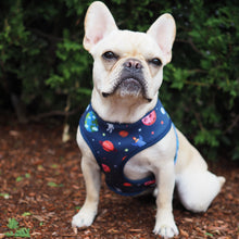 Load image into Gallery viewer, Frenchie Supply Harness - Outer Space