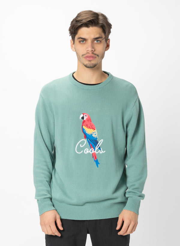 Parrot Crew Knit Teal