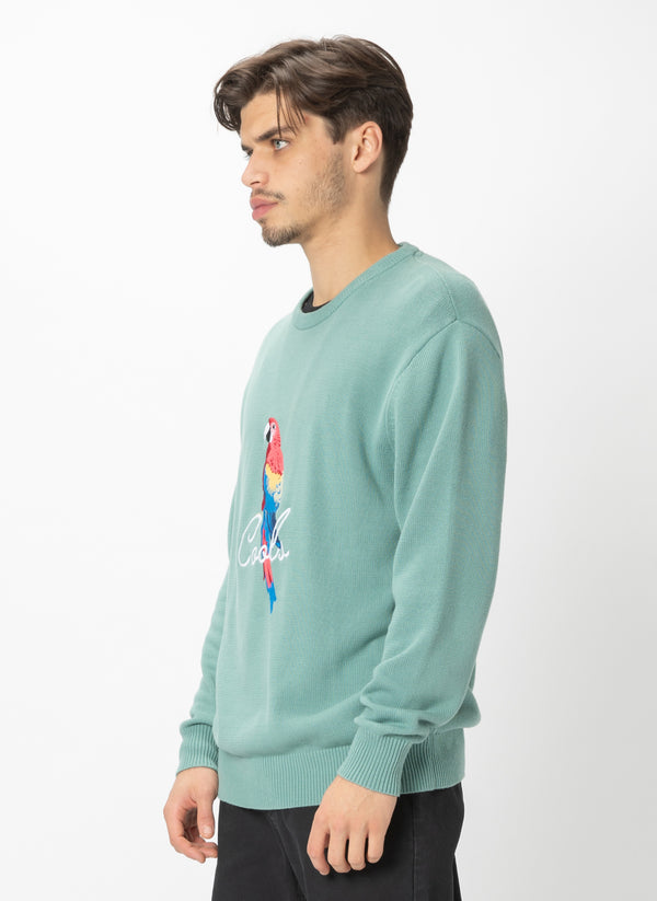 Parrot Crew Knit Teal - Sale