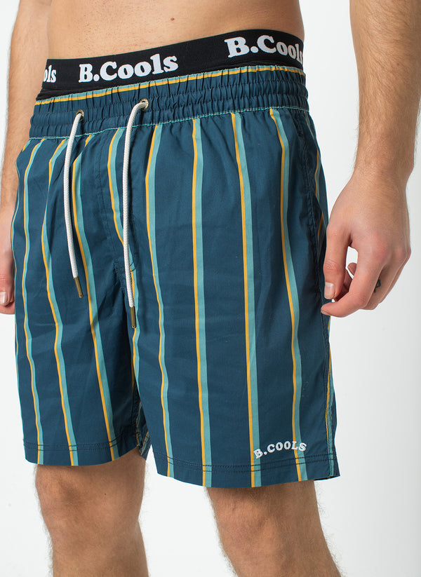 "Amphibious 17"" Swim Short Navy Stripe"